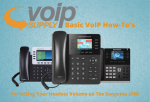 Basic VoIP How-To's (11)