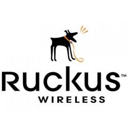 Ruckus Wireless ZoneDirector 1100 License Upgrade