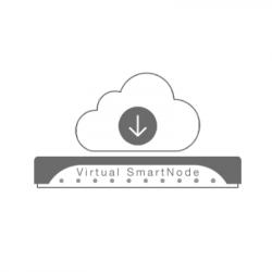 Patton Virtual SmartNode License (CBFL-VPN-TUN1)
