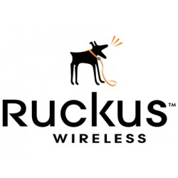 Ruckus vSCG License supporting 500 Ruckus Access Points