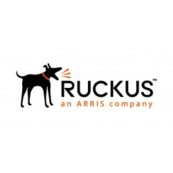 Ruckus ZoneDirector 3000 License Upgrade Supporting an Additional 100 ZoneFlex AP's
