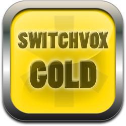 Switchvox Gold 25 User - 1-Yr Renewal 1SWXGSUB25R