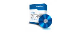 Sangoma Vega SBC VM/Software with 500 Calls