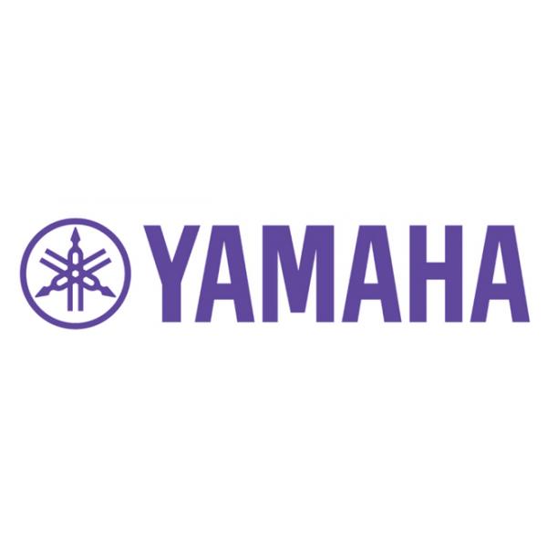 Yamaha FLX Mic Battery  07-FLXMICBAT-01